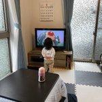 テレビにこれでもかってくらい近寄って必死にテレビ観てる子供!可愛すぎるだろ!