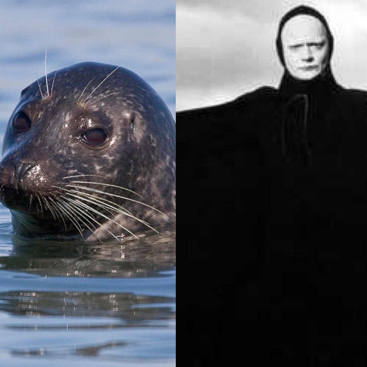 The Seventh Grey Seal #EltonJohnAShowOrMovie