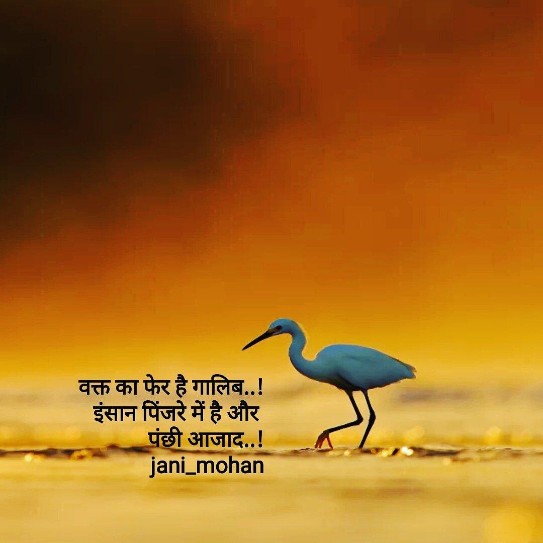 #writer #writerscorner #writerscommunity #quotes #shortpoetry #instaquote #poetrygram #instapoems #poetsociety #heartofpoets #writerssociety  #lovepoems #shortpoem #microtales #poems #poetryislove  #poetscorner #instapoetry #instapoems #poetrylovers #2linespoetry #shayari143 pic.twitter.com/xZlKlmpKrL