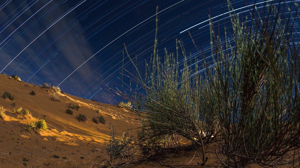 Noches en el desierto.   f8, iso 320, 2,250 sec.  Nikon D7000 17/Nov/2013  @gobiernosonora @NikonMX @nikonians @Nikonistas    #visitsonora #desiertodealtar #elpinacate #longexposure #longexpo #NightPhotography #photoofthedaypic.twitter.com/vnZdfZbdYY