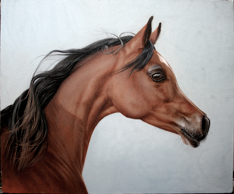 Oil painting on canvas #horse #horseart #equineart #horseartist #equineartist# equestrianart #chestnuthorse #horseartwork #horsesketch #horsedrawing #equines #horsesofinstagram #horsedrawing  #animalsketch #animalart #animaldrawing #petportrait #horseportrait #equineartpic.twitter.com/lwjIR5G569