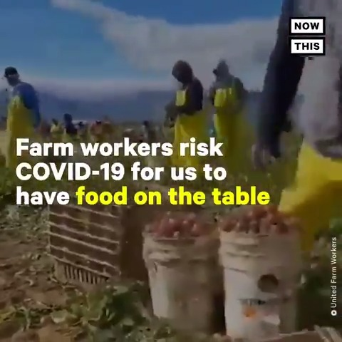 Give it up for the farmworkers who are risking their lives during the pandemic so we can eat