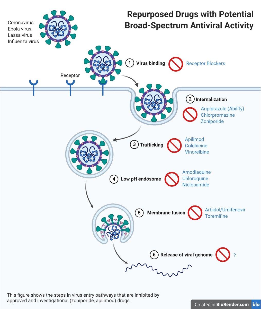 azithromycin antibiotic liquid