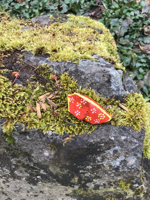 의 미디어: A new hand-painted rock on my run. #seenonmyrun https://t.co/dvOMU5KGKW