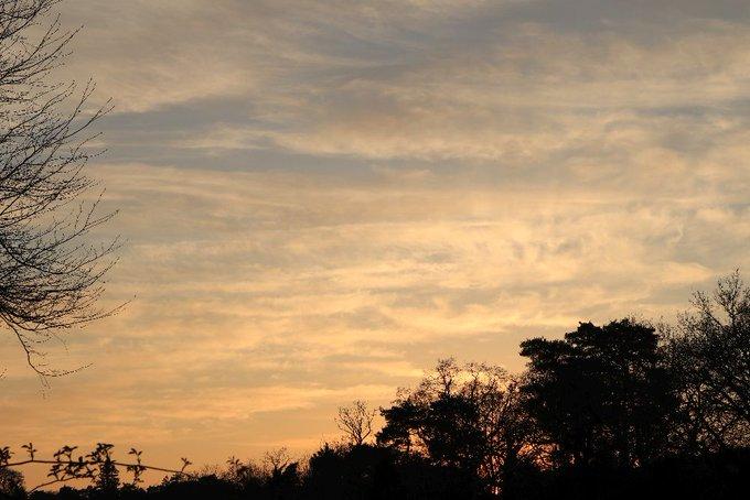 의 미디어: RT @JillHpdc: Evening cloudscape 😊  Farnham #BallsPhotos https://t.co/CAJhaQxHvw