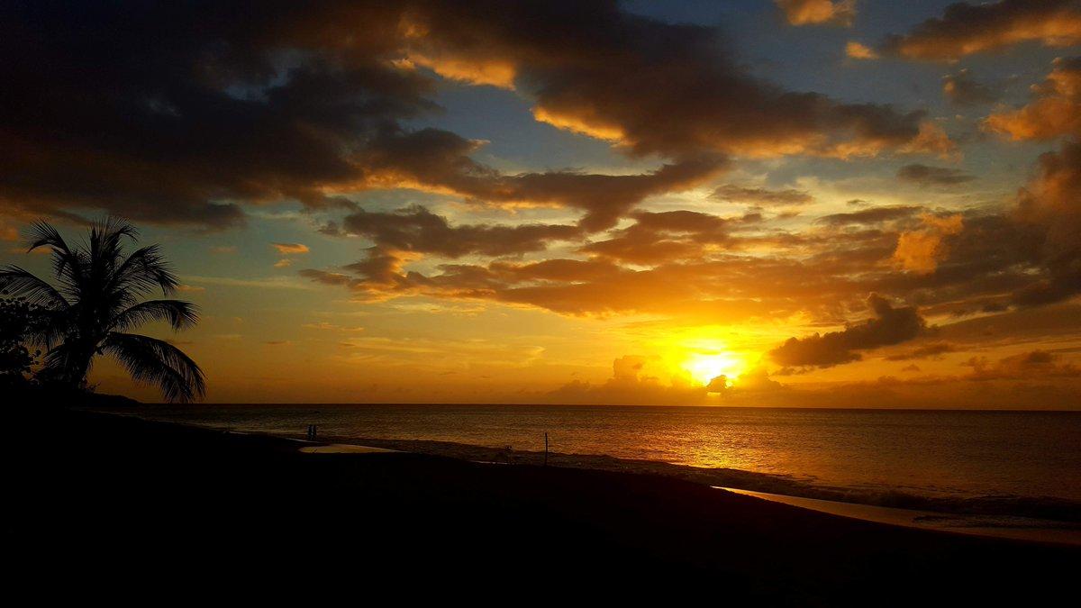 """""""Last night, I dreamt I went to Manderley again."""" (Daphné du Maurier- Rebecca) #souvenir #confinementjour10 #uneîle<br>http://pic.twitter.com/oxemb2IPHE"""