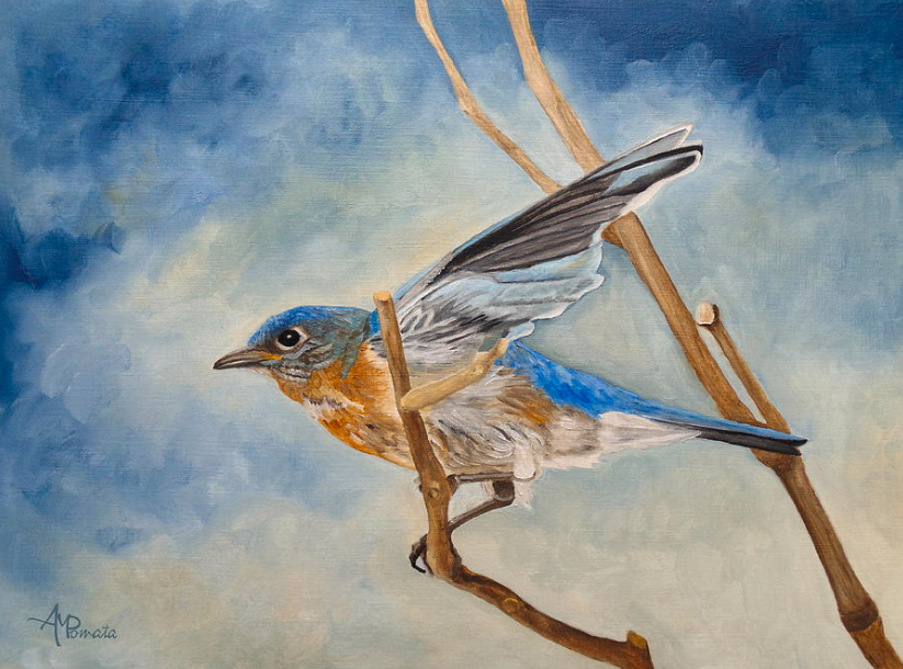 """This is my painting """"Bluebird, Blue Morning"""", based on an original photo by Cindy Treger. You can check it out here: https://fineartamerica.com/featured/bluebird-blue-morning-angeles-m-pomata.html… #art #arte #kunst #искусство #艺术 #アート #ArtistOnTwitter #birds #birdlife #artprints #birdlovers #bluebirdpic.twitter.com/MpSYjh9e1g"""
