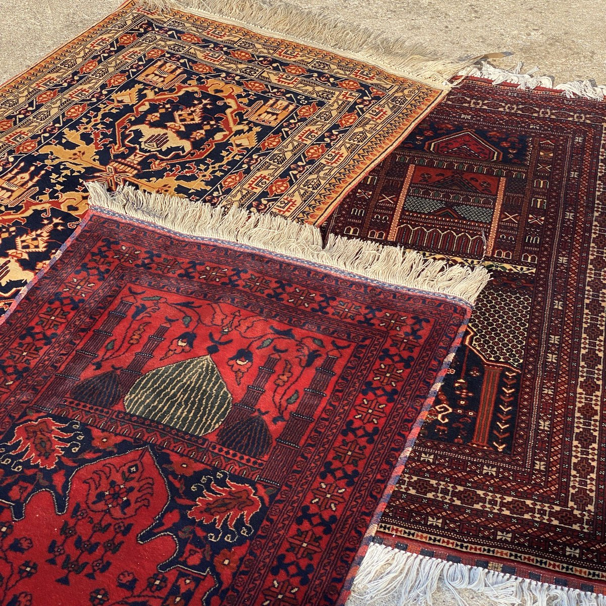 The Afghan Rug On Twitter
