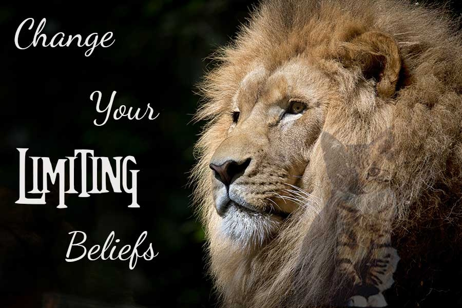 Change your ThetaHealer this season. One of our goals is to build long-lasting and trusting relationships with our clients. Why not be one of them? Get in touch, message me at http://paradigmshiftyourbeliefs.com ! Text Theta to 64600 #belief #success #abundancepic.twitter.com/TBDClslvqz