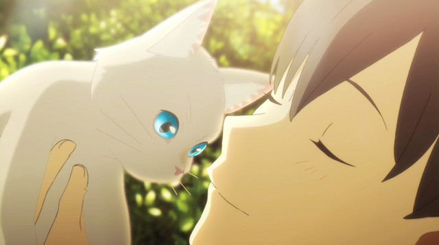 test ツイッターメディア - 「泣きたい私は猫をかぶる」新カット到着、猫の姿になって好きな人と触れ合うhttps://t.co/ngDtOdgdV4 #泣き猫 https://t.co/fiTNUQZEax