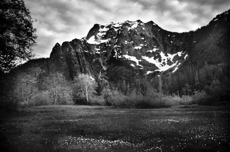 Scenes from Washington #PhotographyIsArt #photographers   #photographyislife #naturephotography #naturelover #landscapephotography #outdoors #nature #hiking #nationalparks #rivers #mountainspic.twitter.com/2e3EIXOylz