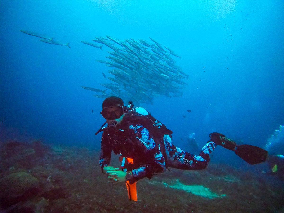 #throwback Seek Adventure and Save the Ocean   Hope to return back soon  #rajaampat   #diving #sea #underwaterphotography #scuba #gopro #ocean #scubadiving #dive #fish #nature #padi #water #travelpic.twitter.com/1nzVdWi6QD