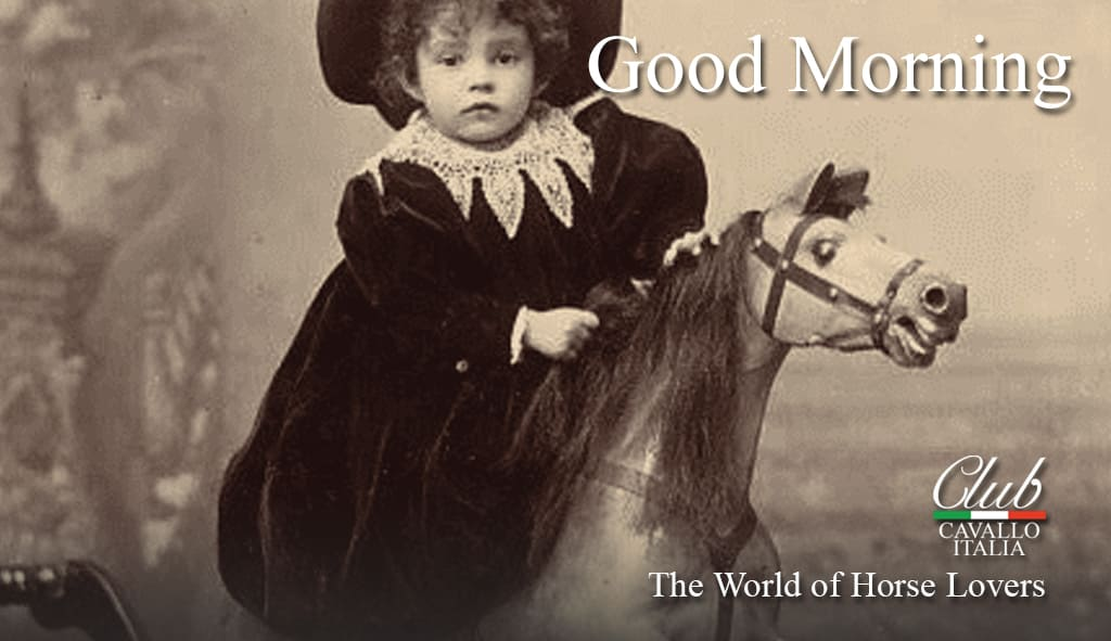 Have a nice day friends. We all stay at home and we will win the Covid-19. Good luck. #goodmorning #horsehour #horsechathour #lovehorses #theshowjumpinghour #ACE_equestrian  #clubcavalloitalia #horses #LoveYourHorse #horsefriendspic.twitter.com/WC399VemaD