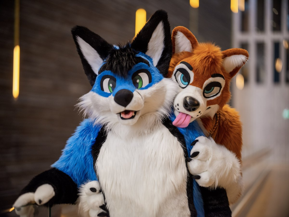 Captured the cute @luckybluefox at #NFC2020  There's no escaping these paws once they caught you!  Who's next?  Happy #FursuitFriday  : @CaptainChaotika<br>http://pic.twitter.com/pix1sQsMIm