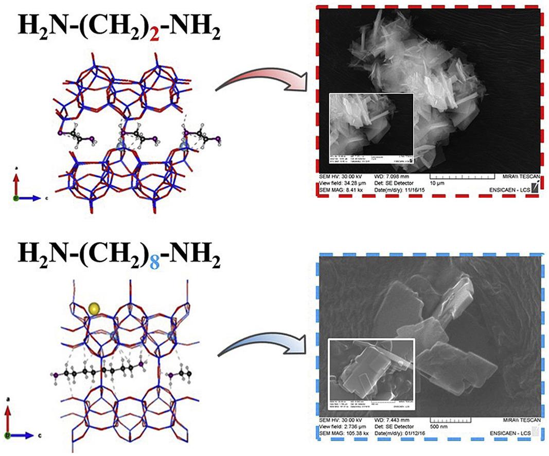🆕New synthesis routes and catalytic applications of #ferrierite crystals. Part 1: 1,8-Diaminooctane as a new OSDA ▶️https://t.co/vzYAdOchv8  @INC_CNRS @ENSICAEN  @Universite_Caen @Reseau_Carnot @Carnot_ESP  @CNRS @CNRS_Normandie @normandieuniv