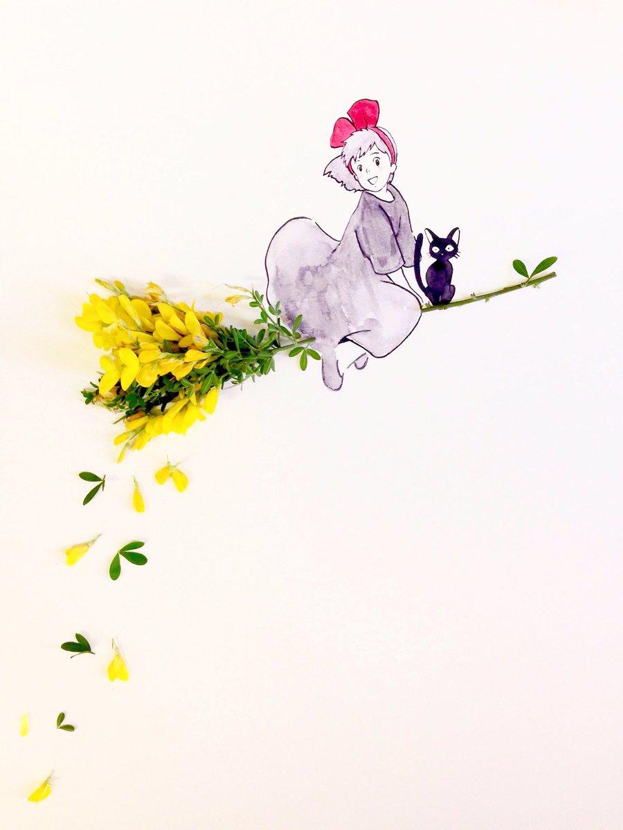 今夜の金曜ロードショーは「魔女の宅急便」エニシダは魔女の箒の材料花言葉は「清楚」「清潔」「きれい好き」