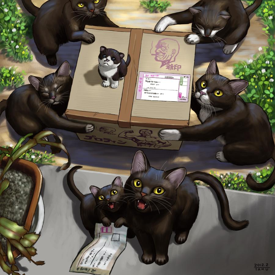 僕たちも運ぶよ!黒猫だから!!#魔女の宅急便