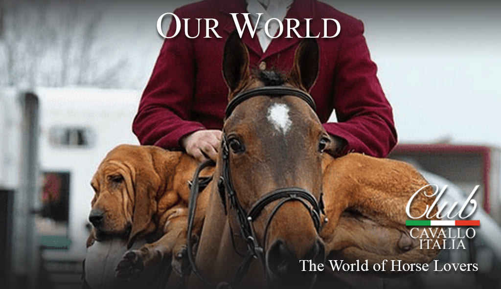 Club Cavallo Italia. The world of those who love horses and their elegance. From https://clubcavalloitalia-shop.it/   Your visit will be particularly welcome. #horsehour #horsechathour #lovehorses #theshowjumpinghour #ACE_equestrian  #clubcavalloitalia #horses #LoveYourHorse #horsefriendspic.twitter.com/FRJH9kLLsB