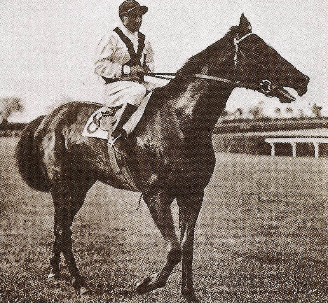 Donatello II, one of the great Italian horses of the 1900s: https://clubcavalloitalia.com/donatello-ii/ You are welcome #horsehour #horsechathour #lovehorses #theshowjumpinghour #ACE_equestrian  #clubcavalloitalia #horses #LoveYourHorse #horsefriendspic.twitter.com/i1yJilCMrB