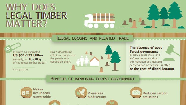 Download a free infographic: Why does legal timber matter? bit.ly/2y8CjQJ #FAO-#EU #FLEGT