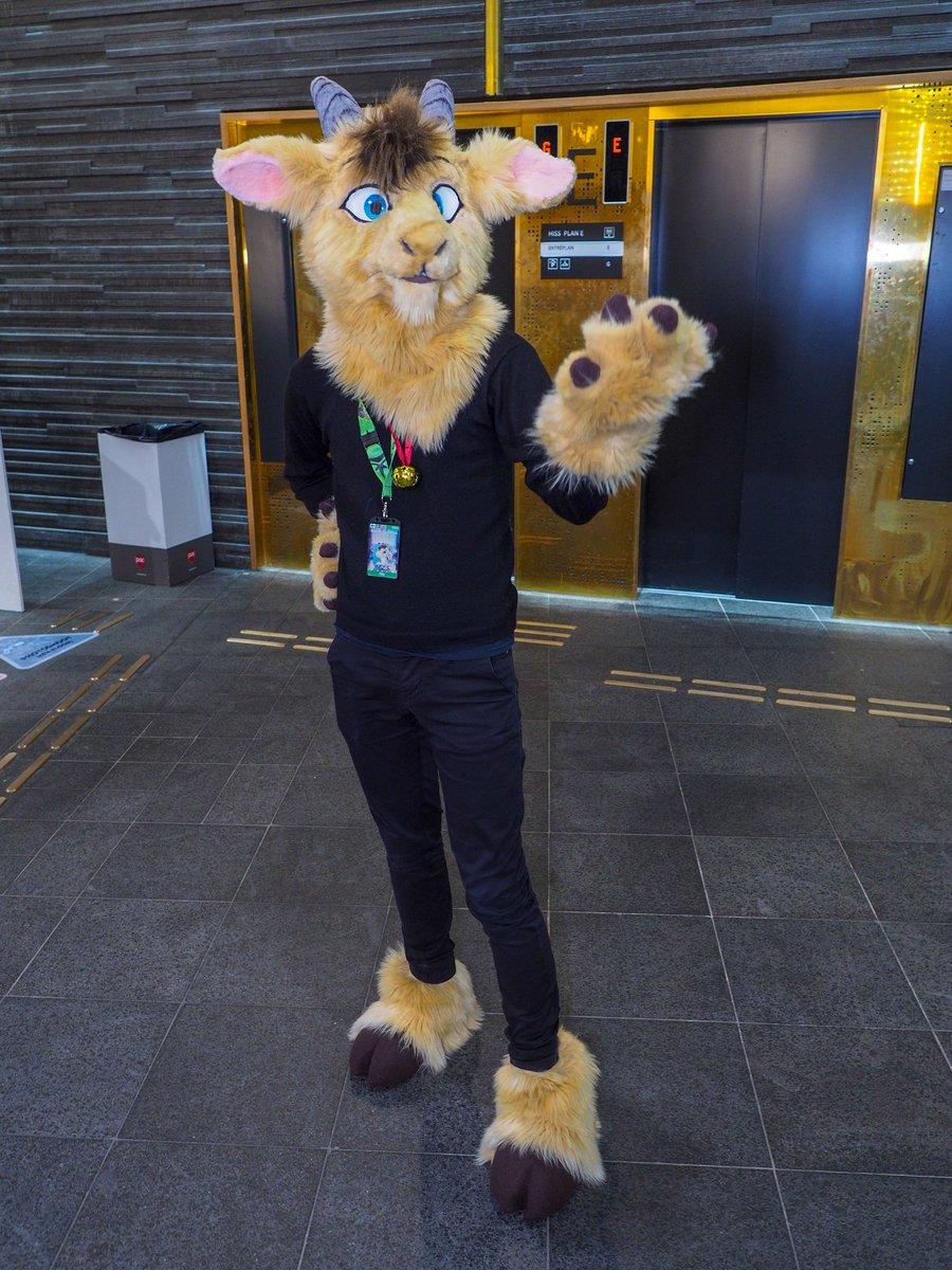 It's me! #NordicFuzzCon2020 #NFC2020 #FursuitFriday  @lionplush<br>http://pic.twitter.com/dUuK4Z2QTu