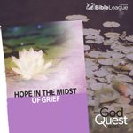 Image for the Tweet beginning: Hope in the Midst of