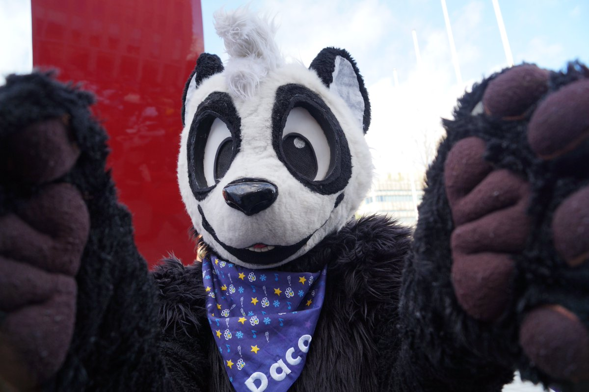 dont worry too much about the Corona virus. why not go Ahead and have a hug from this Panda instead of worrying too much about the Bullshit Politics during this Virus?  use hug attack!  suiter is @panda_paco  Photo from #NFC2020 #Nordicfuzzcon <br>http://pic.twitter.com/89SJcWbYUs
