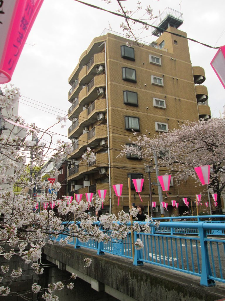 京葉 学院 ビット キャンパス