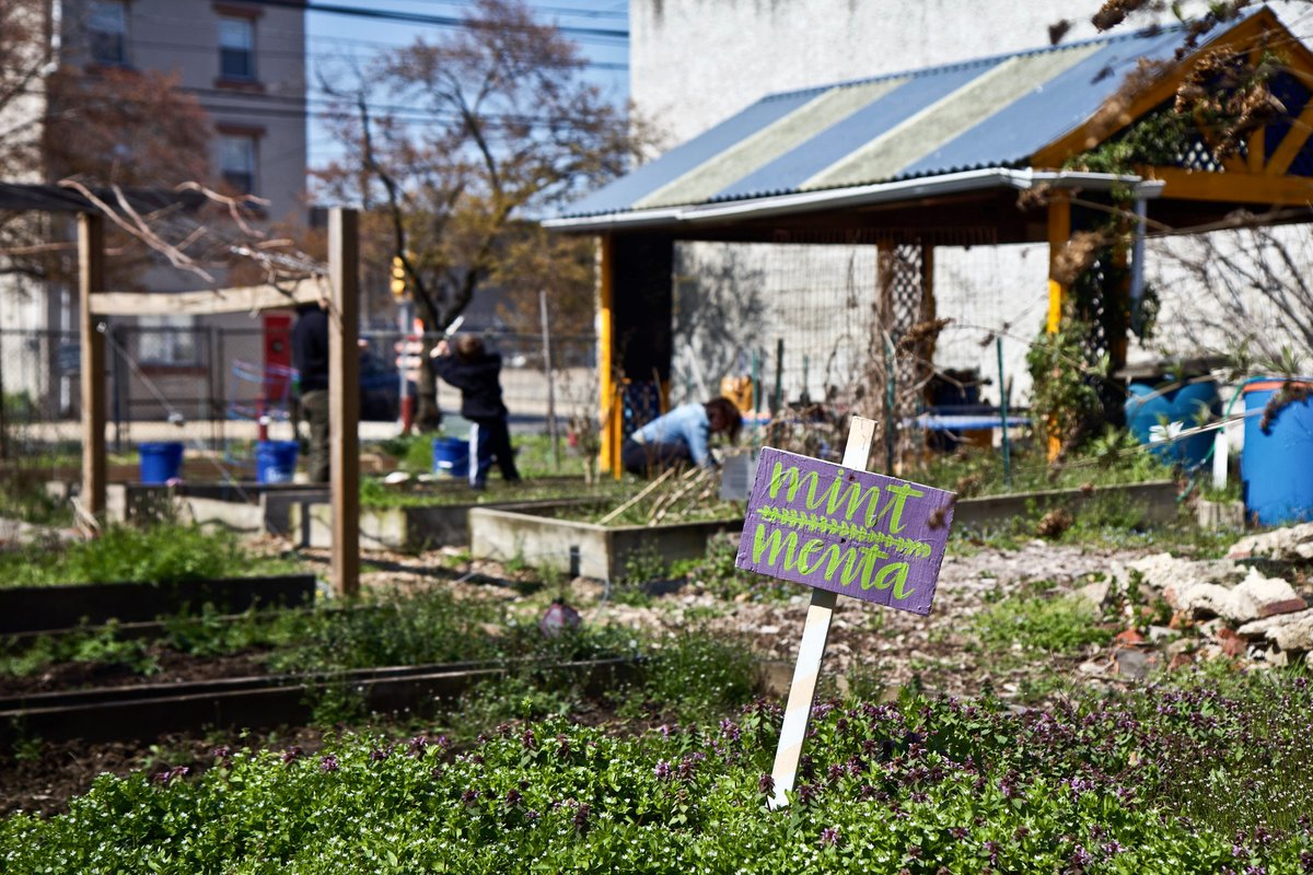 Yes, you can go to your community garden; City deems farms 'essential' dlvr.it/RShcM9