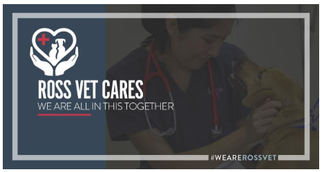 Thank you to our Veterinarians who are committed to caring for all of our family members. #RossVetLife #RossieResilience #WeareRossVetpic.twitter.com/oV79B3e1h9