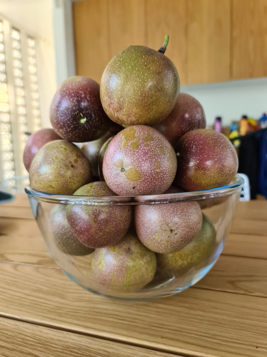 My place is in lockdown but we have 4 vines so may survive on passionfruit alone.  We had so many had to give the neighbours. pic.twitter.com/5TccRczb9m