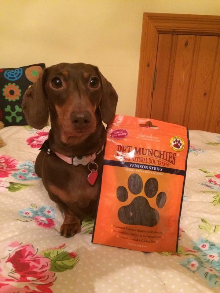 #win #giveaway of #PetMunchies #natural #dog  #pet #treats  #dogtreats  #venison  #dogs #competition #dogsoftwitter  follow & RT 2enter by 5 Aprilpic.twitter.com/JmboZbJUhL