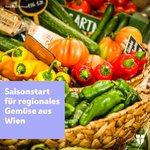 Image for the Tweet beginning: Über 200 Wiener Gemüsebaubetriebe dienen