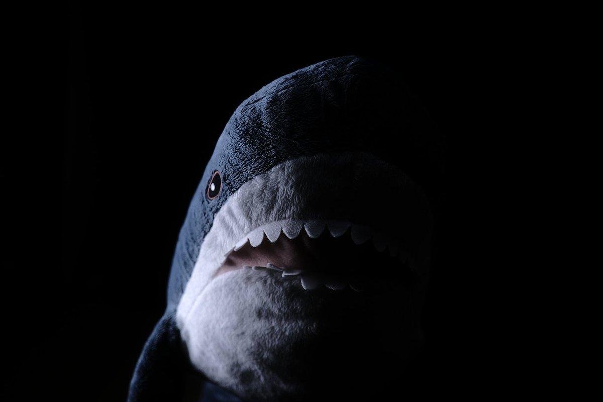 外出自粛でやることがないので、IKEAのサメを怖そうに撮ってたら一日が終わった。