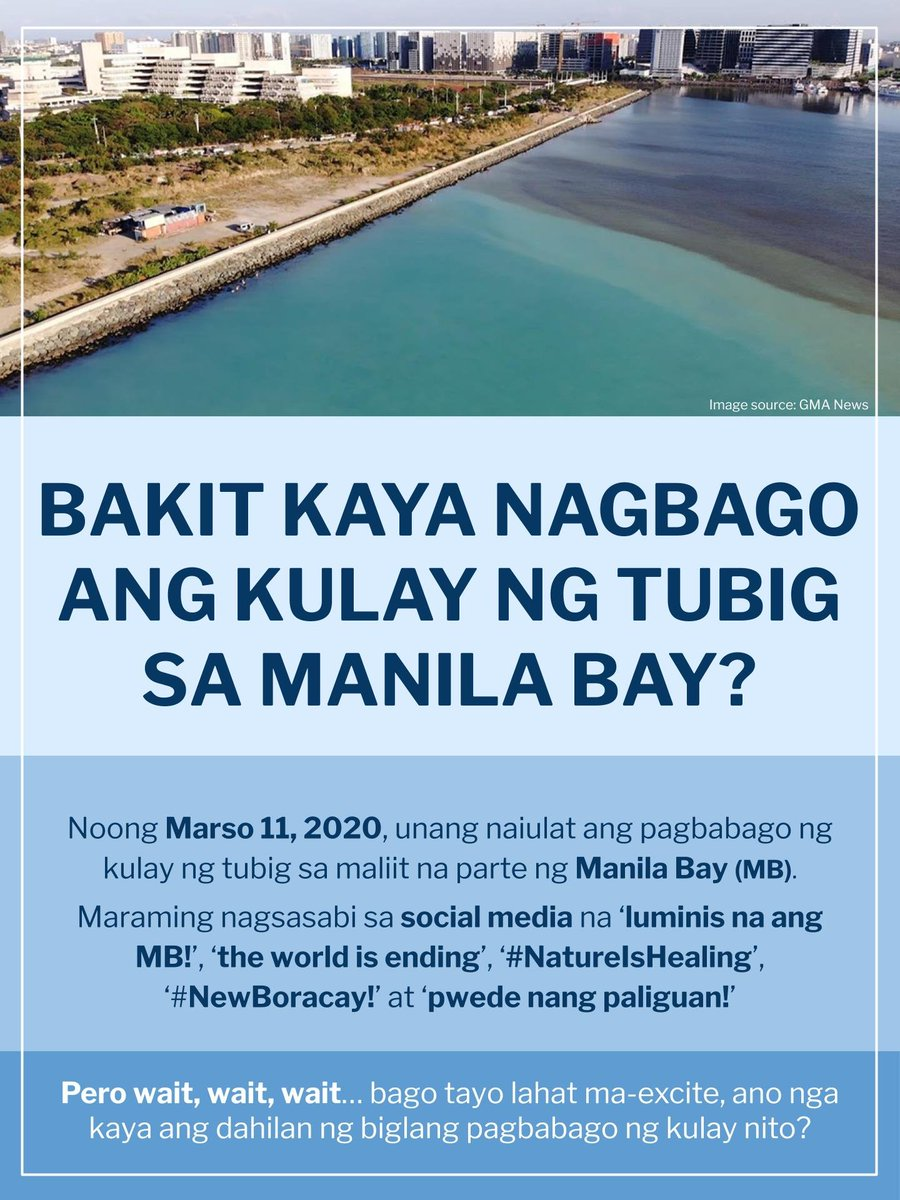 READ: Microbial Oceanography Laboratory explains Manila Bay's sudden change in color.  https://bit.ly/2UKGYQH