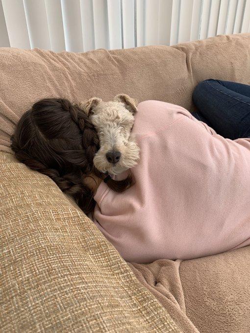 의 미디어: RT @megkat22: Pops and hoosis having a snuggle 🥰 https://t.co/u6GTyxhZp8
