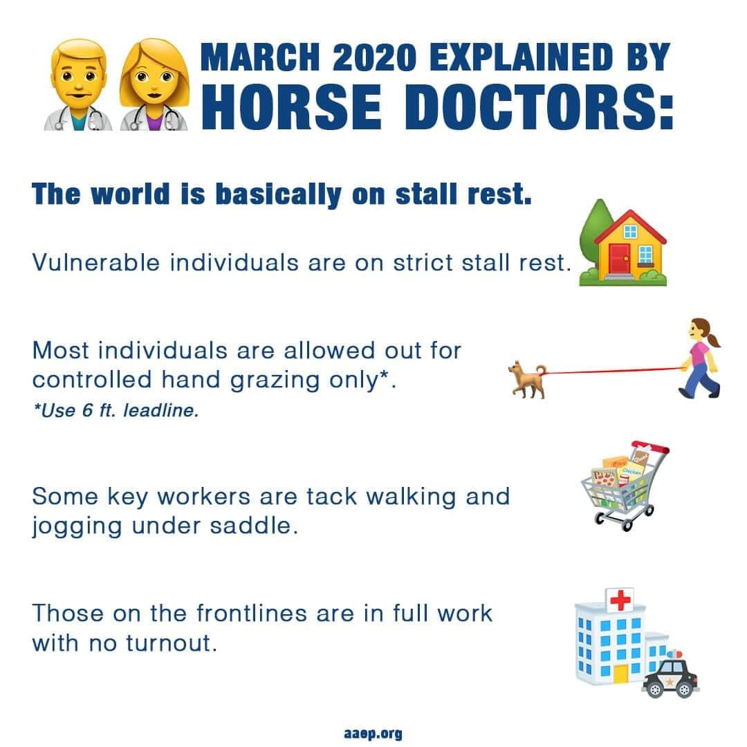 Explanation of social-distancing for the equestrian! #quarantine #socialdistance #equestrians #ilovehorses #MincklerHomespic.twitter.com/myqkqWIa37