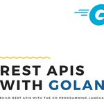 Image for the Tweet beginning: best #udemy coupon#code Golang: Intro