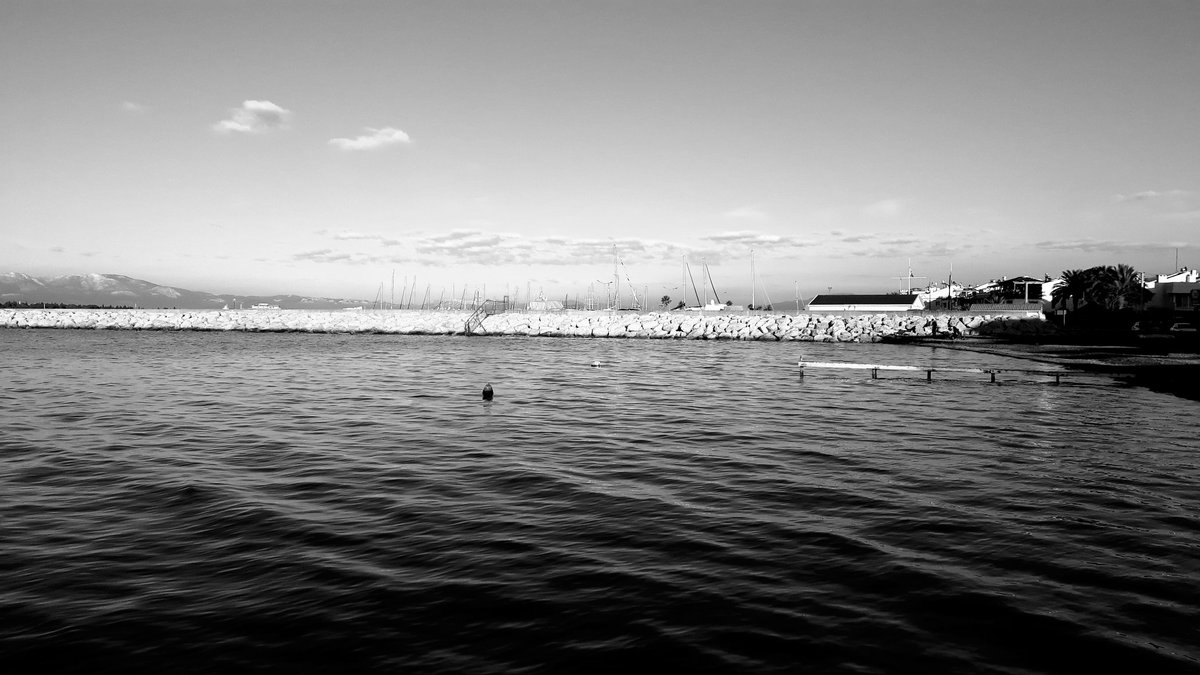 #blackandwhitephoto #bnw #monochrome #instablackandwhite #monoart #insta_bw #bnw_society #bw_lover #bw_photooftheday #photooftheday #bw #instagood #bw_society #bw_crew #bwwednesday #insta_pick_bw #bwstyles_gf #irox_bw #igersbnw #bwstyleoftheday #monotone #Twitterpic.twitter.com/UH3CpLzLpr