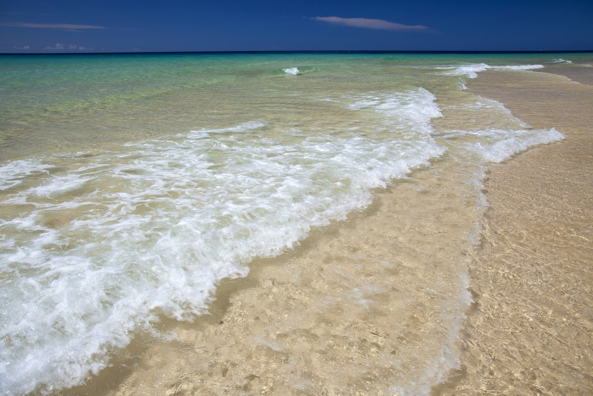 #WhileWeWait Beautiful beaches of #Fuerteventura, #CanaryIslands This one is Playa del Matorral in #MorroJable More photos of beaches here http://www.shutterstock.com/g/tamara/sets/210103898?rid=2050… #Canaries #IslasCanarias #QuedateEnCasa #YoMeQuedoEnCasa #nature #beauty #mar  #photooftheday #QueGanas #ocean pic.twitter.com/aUYqzeP6qb