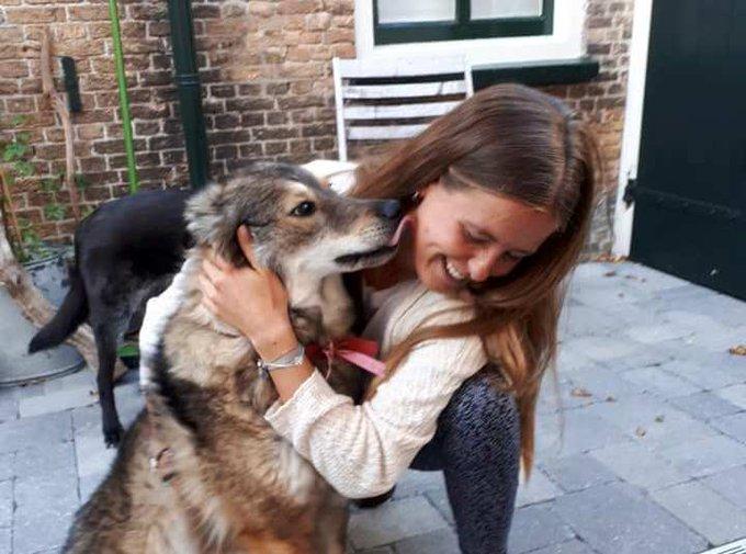 Weggelopen hond weer veilig thuis https://t.co/TDzR6FYeLU https://t.co/A8Nqa1xW53