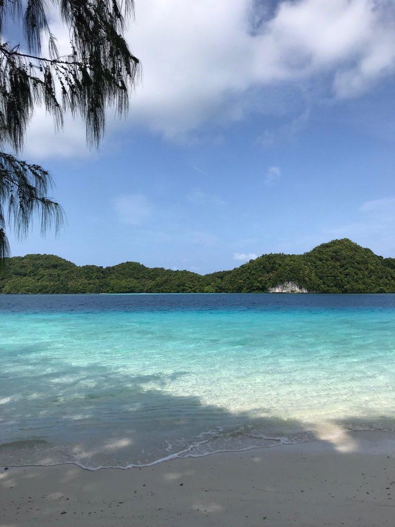 パラオ🇵🇼では新型コロナウイルスの感染者は確認されていません。パラオは日本からの渡航を一度も制限していません。パラオの海の美しさは変わりません🏝新型ウイルスの問題が収束したら、手つかずの自然と日本の影響が残る「トクベツ」な国、パラオにぜひいらしてください‼️(写真撮影:柄澤大使)