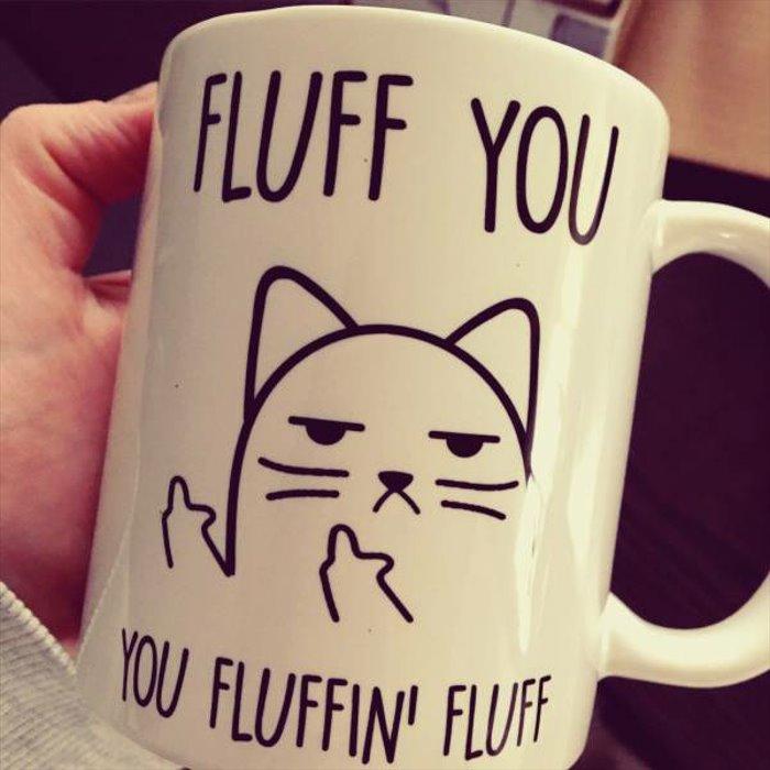 fluff you http://www.dailyhaha.com/_pics/fluff-you.htm?utm_source=bit.ly&utm_medium=twitter…pic.twitter.com/6QAsIco1Lk