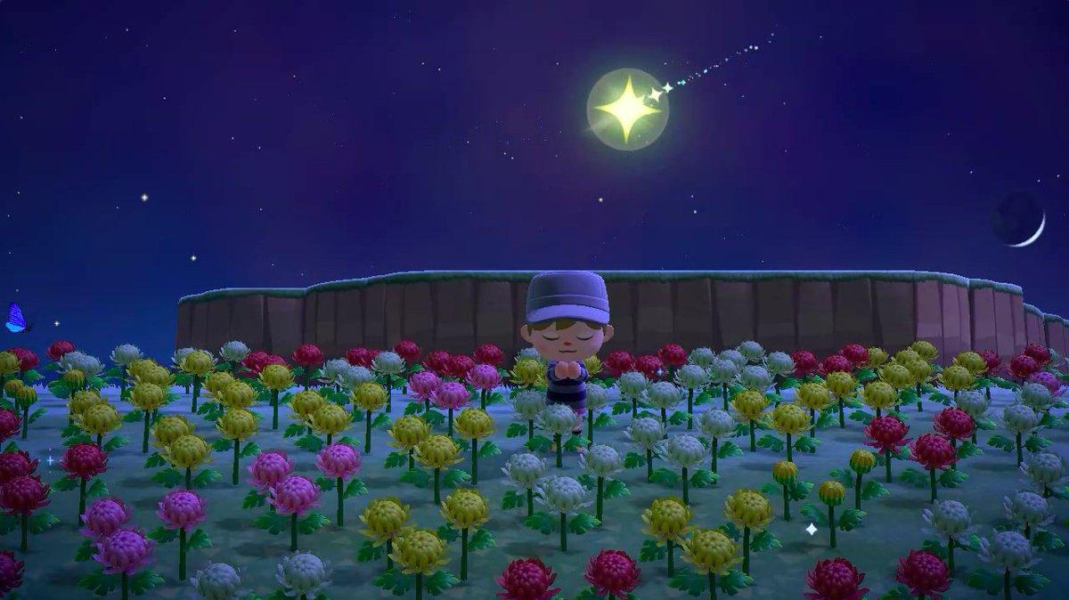 流れ星 あつ森 お祈り