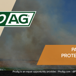 Image for the Tweet beginning: Ask about PFP today! ProAg's