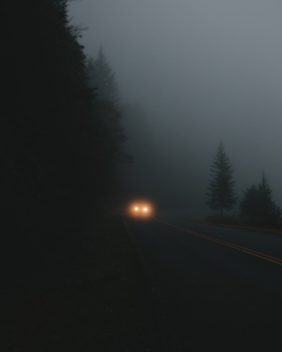 """WISE WORDS """"Writing is like driving at night in the fog. You can only see as far as your headlights, but you can make the whole trip that way."""" E. L. Doctorow #goldeneggacademy #writingforchildren #wisewords #creativewriting #writerscommunity #writerslife<br>http://pic.twitter.com/oRz0AQ0JCr"""