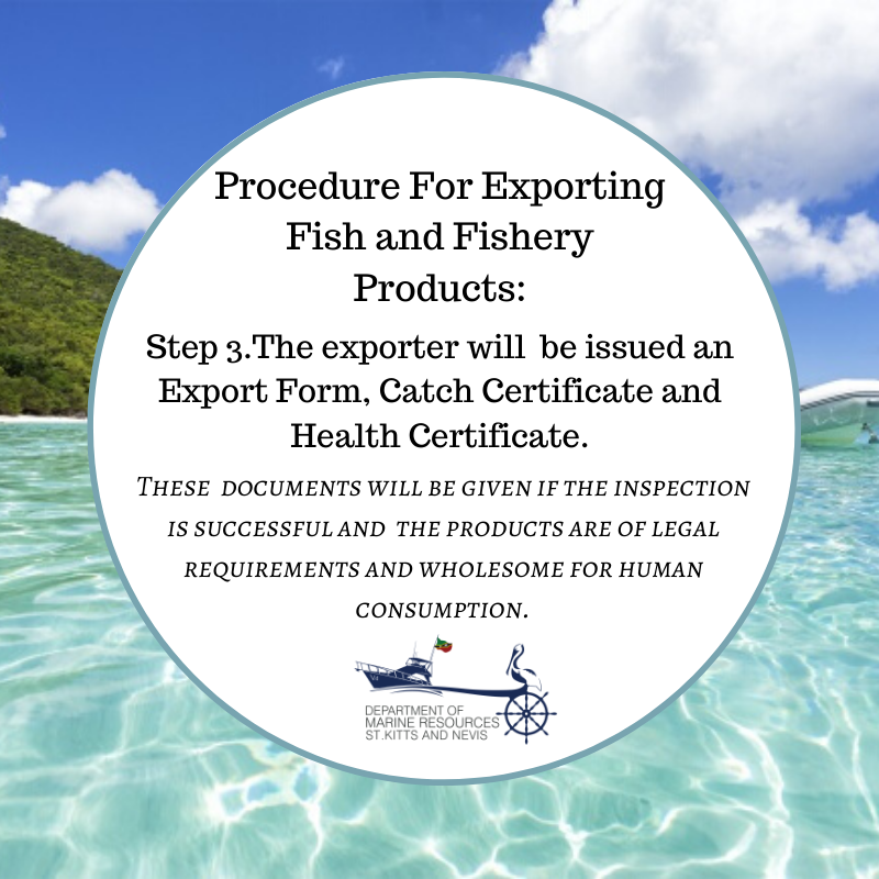 What is the procedure when exporting fish and fishery products?⁣ ⁣ STEP 3.The exporter is given an Export Form, Catch Certificate and Health Certificate.  ⁣ ⁣#DepartmentOfMarineResourcesSKN #DMR #SeAmazing #SeaLife #OceanLife #LifeAtSea #SeaCreatures #DiveInpic.twitter.com/0kpWs6orSZ