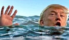 You see Trump drowning, what are you throwing him??