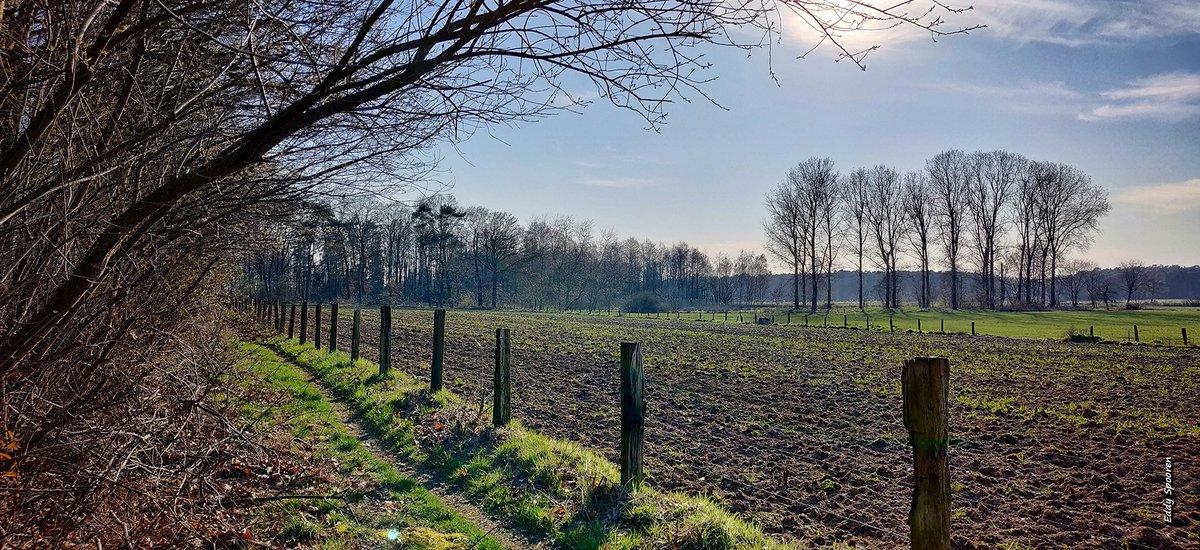 Eksel... #Belgium #HechtelEksel #Bosland #MobilePhonePhotography #MobilePhoto #Spring #Nature #Hikingpic.twitter.com/57i0WBqkhh
