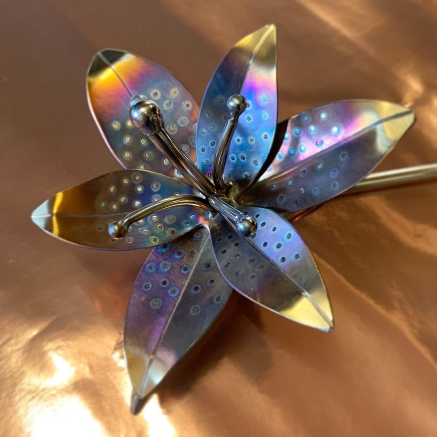 Another Lily recently commissioned. Handmade using high quality stainless steel at my workshop in Exmoor.   #lily #flowers #sculpture #handmade #commision #giftideas #metalart #metalwork #tig #propane #colours #workshoplife #workshop #exmoor #bellecolewmapic.twitter.com/PQcbZl47vP